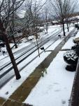 shoveled snow